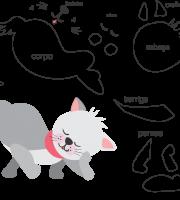 Molde de gato 4 para eva, feltro e artesanato