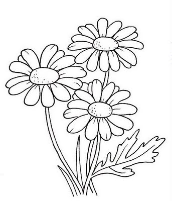 Desenhos Para Colorir Das Margaridas