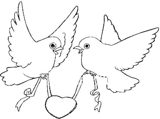 Desenhos Para Colorir Pássaros Carregando Cordão De Coração
