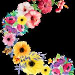 Modelo, Imagem de Flores1 em png para casamento