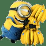 Meu Malvado Favorito – Minions e as Bananas PNG