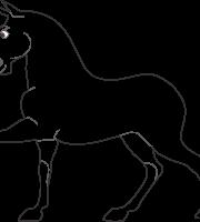 Molde Cavalo Maximus Enrolados