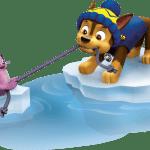 Patrulha Canina – Chase 5 PNG