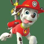Patrulha Canina – Marshall 2 PNG