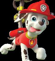 Patrulha Canina - Marshall 2