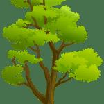 Árvores – Árvore 4 PNG