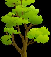 Árvores - Árvore 4
