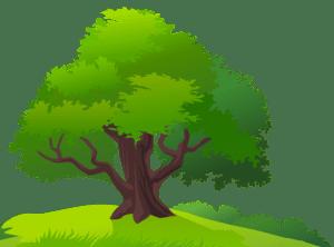 Árvores - Árvore 7