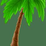 Árvores – Coqueiro 3 PNG