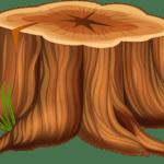Árvores – Tronco de Árvore PNG
