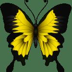 Borboletas – Borboleta Amarela e Preta PNG