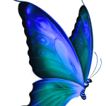 Borboletas – Borboleta Azul 2 PNG