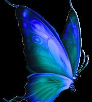 Borboletas - Borboleta Azul 2