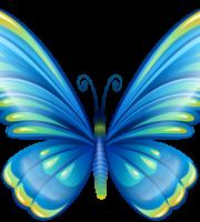 Borboletas - Borboleta Azul Colorida