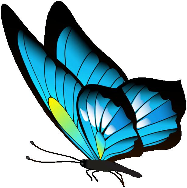 Borboleta Azul E Preta PNG Imagens E Moldes