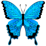 Borboletas – Borboleta Azul e Preto PNG