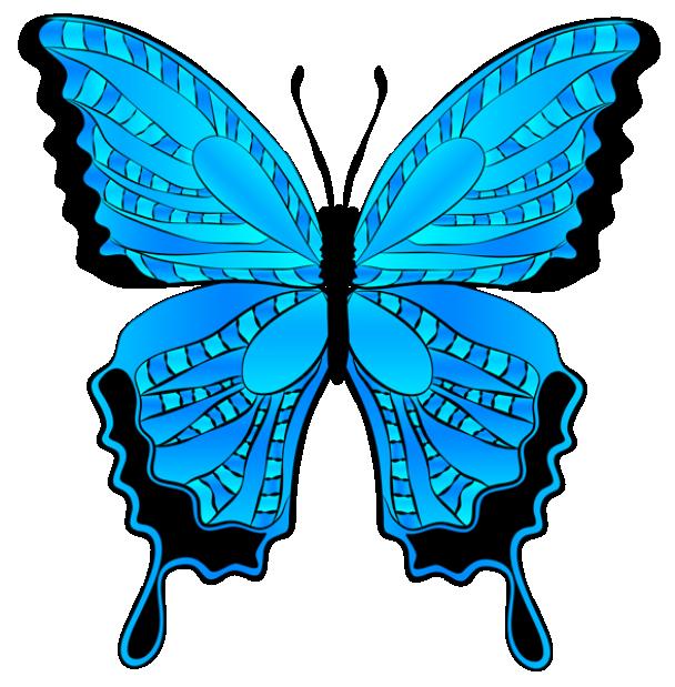 Borboleta Azul E Preto PNG Imagens E Moldes