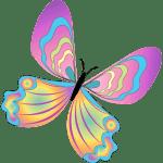 Borboletas – Borboleta Bonita Colorida 10 PNG