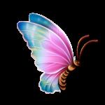 Borboletas – Borboleta Bonita Colorida 11 PNG