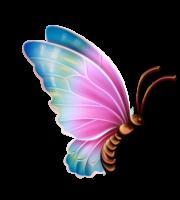 Borboletas - Borboleta Bonita Colorida 11