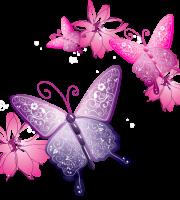 Borboletas - Borboleta Bonita Colorida 12