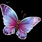 Borboletas – Borboleta Bonita Colorida 14 PNG