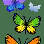 Borboletas – Borboleta Bonita Colorida 2 PNG