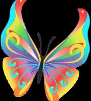 Borboletas - Borboleta Bonita Colorida 6