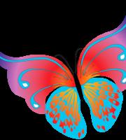 Borboletas - Borboleta Bonita Colorida 9