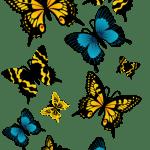 Borboletas – Borboleta Laranja e Azul 2 PNG