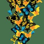 Borboletas – Borboleta Laranja e Azul PNG