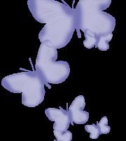 Borboletas - Borboleta Lilás 2