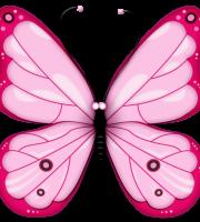 Borboletas - Borboleta Rosa
