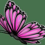 Borboletas – Borboleta Rosa e Preta 2 PNG