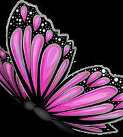 Borboletas - Borboleta Rosa e Preta 2