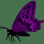 Borboletas – Borboleta Roxa e Preta PNG
