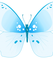 Borboletas - Borboleta Tons de Azul 2