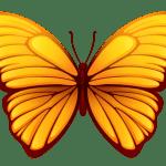 Borboletas – Borboleta Tons de Laranja e Terra PNG