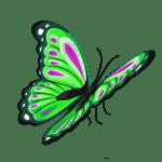 Borboletas – Borboleta Verde e Preta 5 PNG