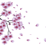 Flores – Flor Bonita Lilás PNG