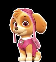 Patrulha Canina - Skye 5