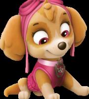 Patrulha Canina - Skye 8