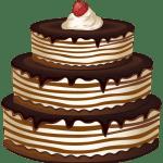 Imagem de Bolos – Bolo de Chocolate 2 PNG