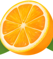 Imagem de Frutas - Laranja 10 PNG