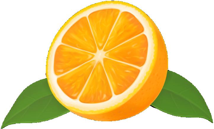 Imagem De Frutas Laranja 10 Png Imagens E Moldes Com Br