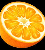 Imagem de Frutas - Laranja 11 PNG