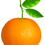 Imagem de Frutas – Laranja 2 PNG