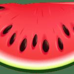 Imagem de Frutas – Melancia 3 PNG