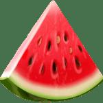 Imagem de Frutas – Melancia 5 PNG