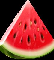 Imagem de Frutas - Melancia 5 PNG